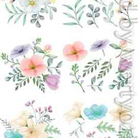 Vector flowers painted with watercolors Free Download
