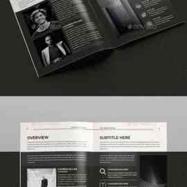 GraphicRiver Annual Report 23853233 Free Download