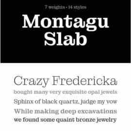 Montagu Slab Serif 21 Typeface Free Download