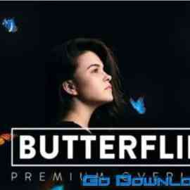 30 Butterflies Overlay Free Download