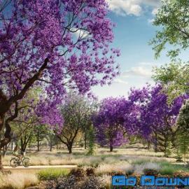 Globe Plants Bundle 08 – Oceania Trees Free Download