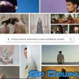 Videohive Search Logo Reveal For Premiere Pro 34098889 Free Download