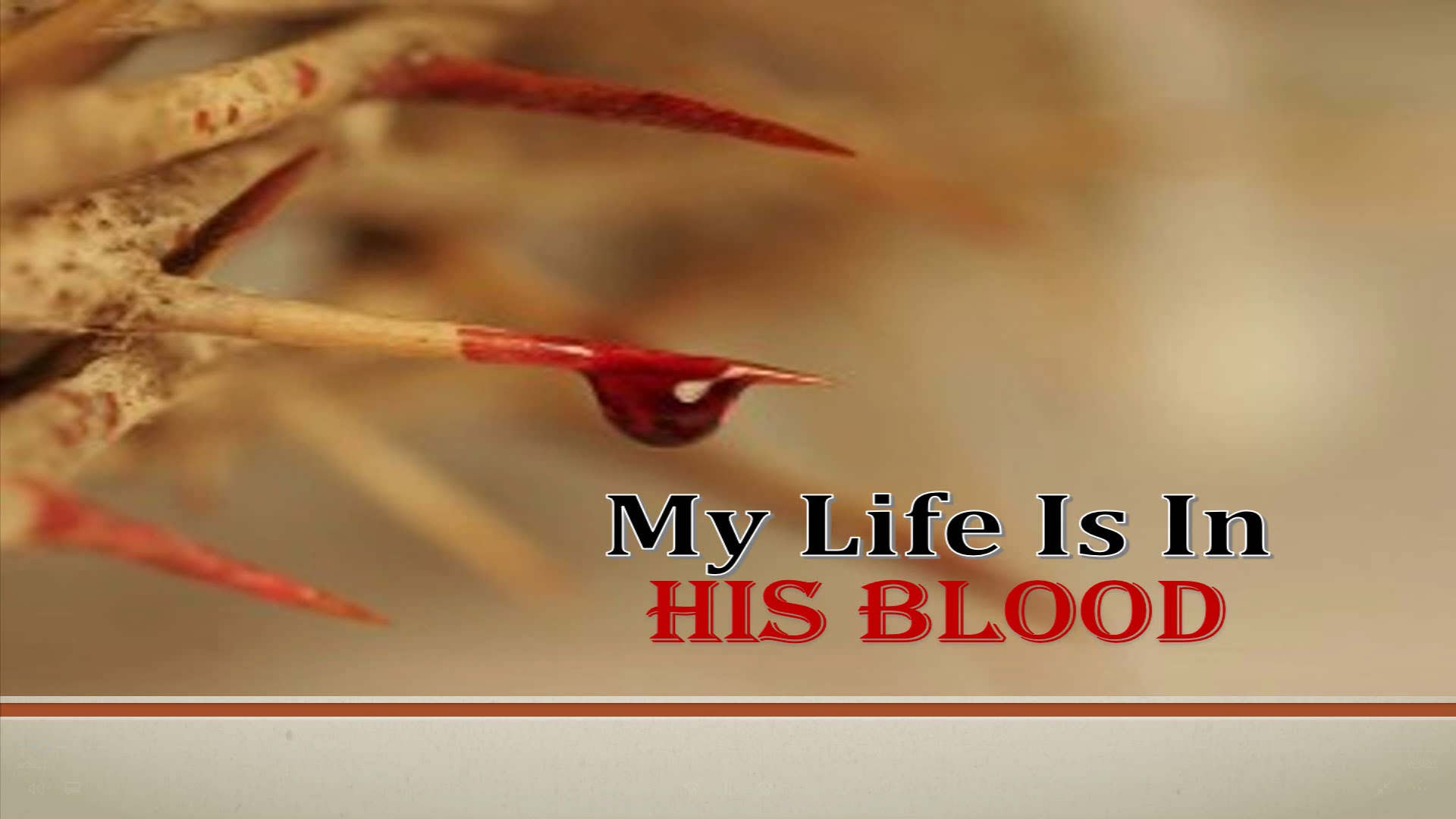 My Life Is In His Blood