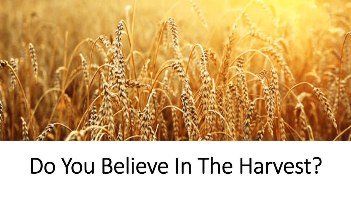 Do You Believe In The Harvest?