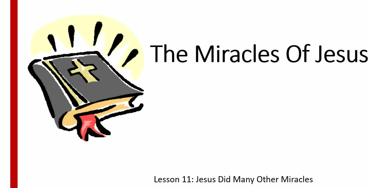 The Miracles Of Jesus ( Lesson 11: Jesus Did Many Others Miracles)