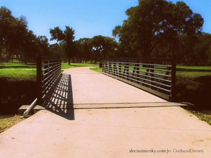 Bridge-alecia simersky