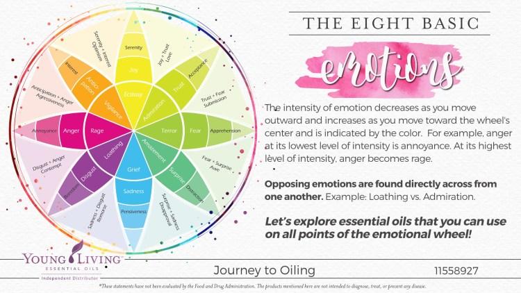 07-Eight-Basic-Emotions-1