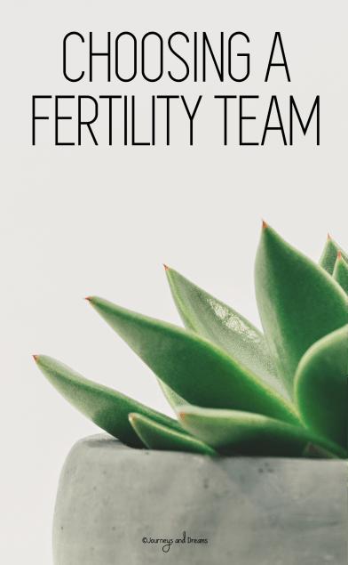 Infertility - Finding A Specialist - Choosing a Fertility Team