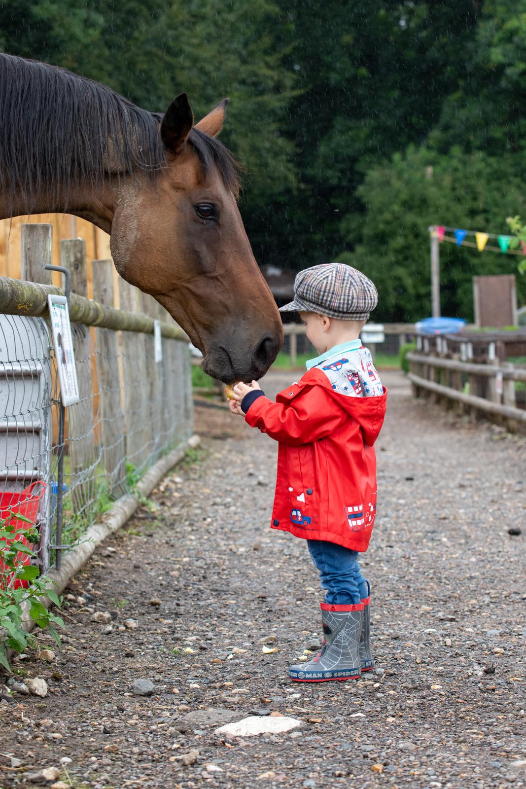 Godstone Farm Day Nursery gallery