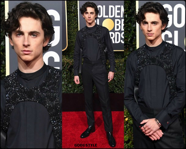 timothee chalamet, golden globes, party, looks 2019, red carpets, looks, style, details, fashion, globos oro
