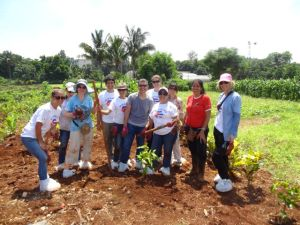 Cooperative farm in Cuba
