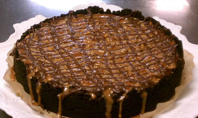 Turtle Dove Cheesecake