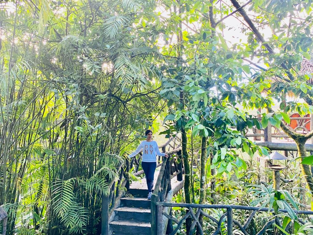 waterfall gardens