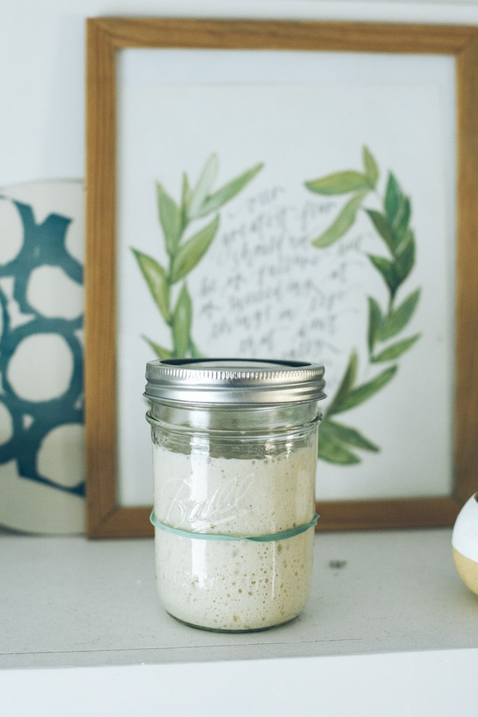 How to make your #sourdough starter last indefinitely / Go Eat Your Bread with Joy