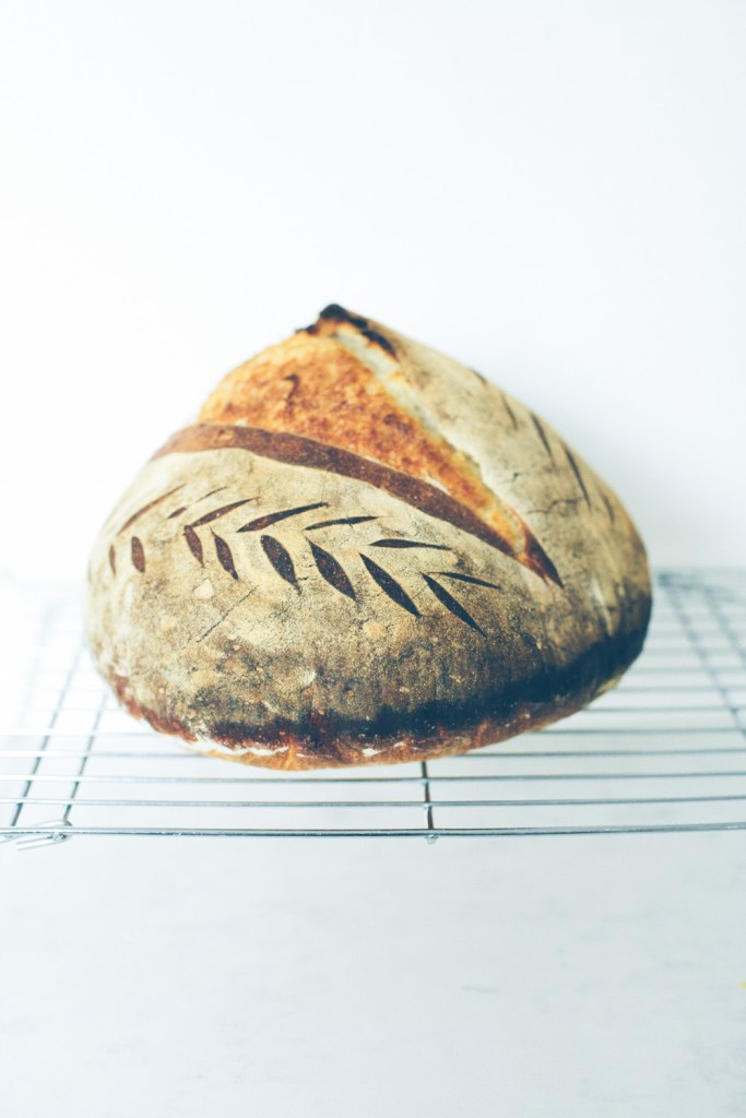 What 5+ New Sourdough Bread Bakers Would Tell You / Go Eat Your Bread with Joy