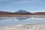 Bolivia Salt Flat Tour, Day 3