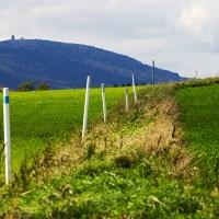 bayrische Grenzmarkierung