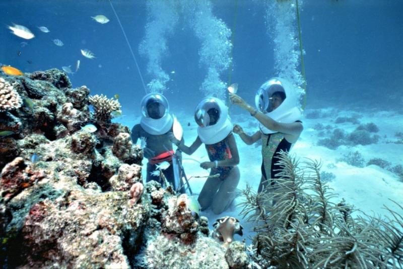 See the coral reef at Cham island, Hoi An, Vietnam