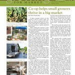 Co-op Helps Small Farmers Thrive in a Big Market by Diane Szukovathy: READ MORE