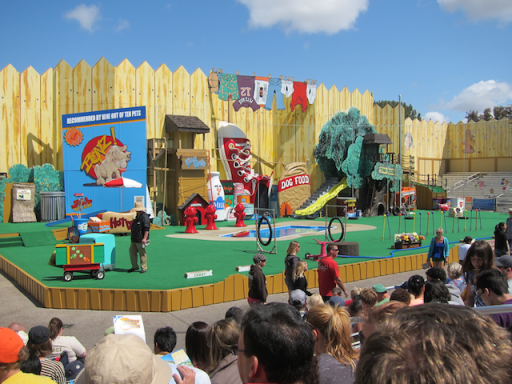 Pets Rule show at SeaWorld San Diego
