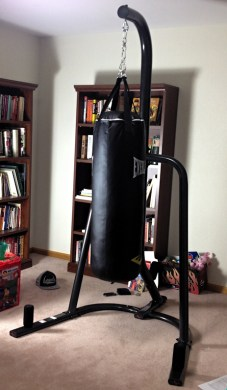 Everlast Boxing Setup