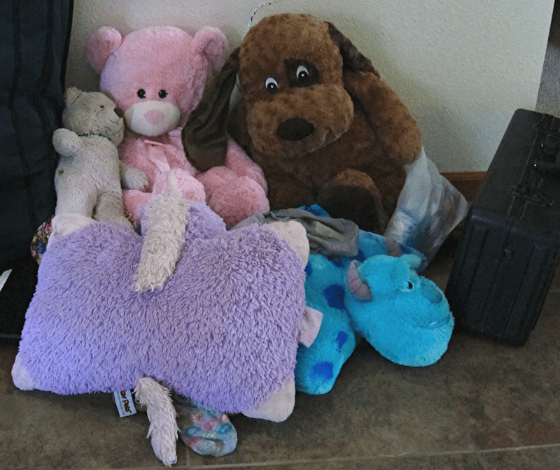 The Stuffed Animal collection that moves from house to house