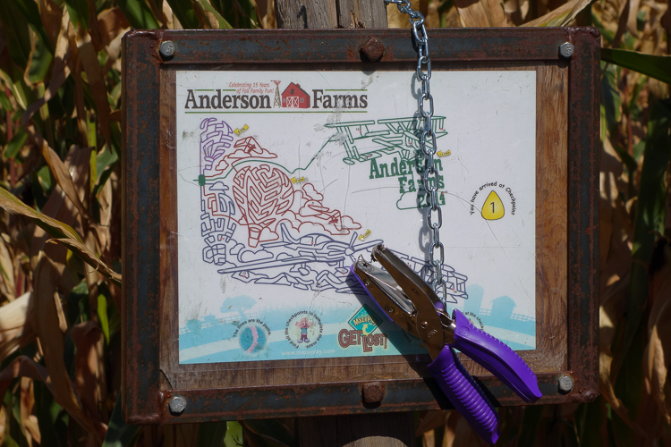 punch station in the corn maze