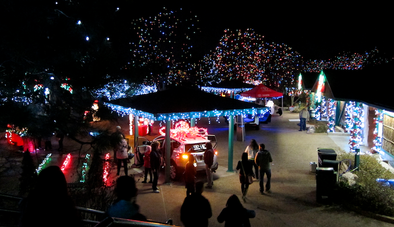 toyota play area, denver zoo lights