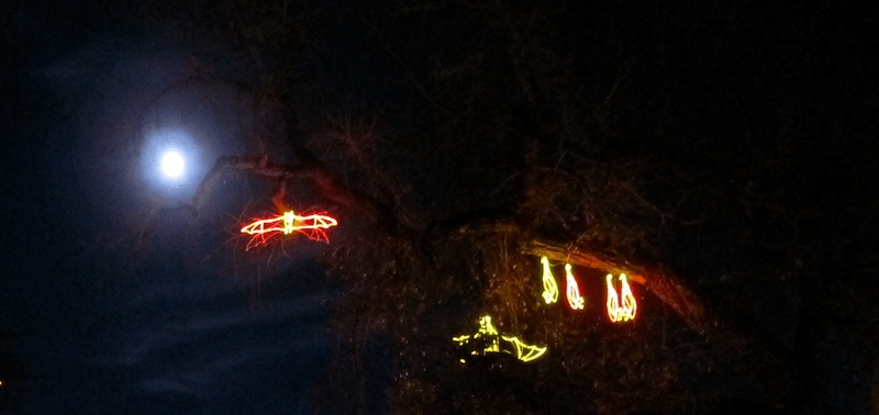 illuminated light up bats, moon