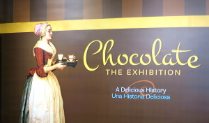 chocolate the exhibition signage dmns