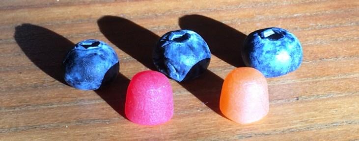 sundown naturals probiotics with blueberries