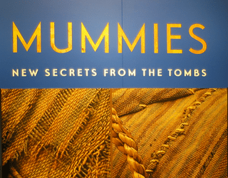 dmns mummies secrets tombs exhibit