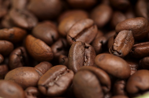 coffee beans, up close