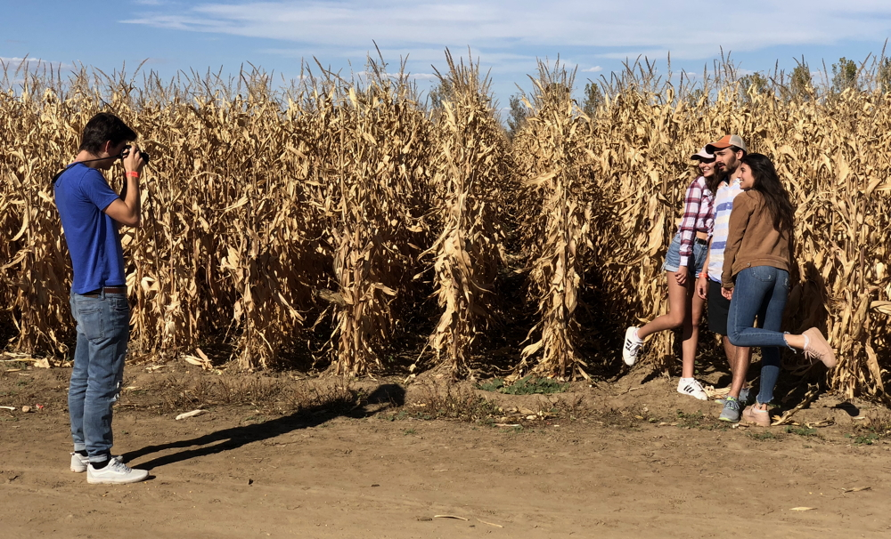 photos on edge of corn maze