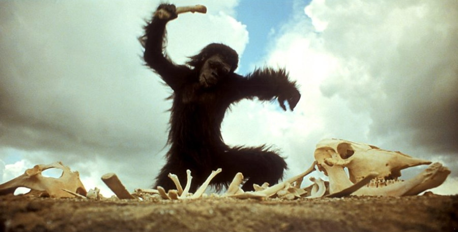 early man discovers tools - 2001 a space odyssey