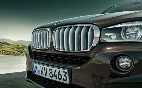 BMW-X5_wallpaper_1920x1200-Nr.14
