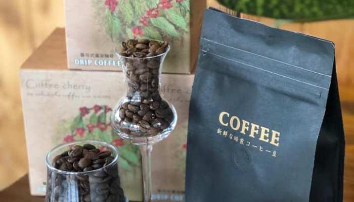 珍咖啡 屏東咖啡廳 內埔新鮮烘焙咖啡豆