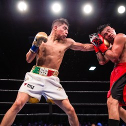 Vargas vs Herrera_12_15_2017_Fight_Pete Young _ Premier Boxing Champions11