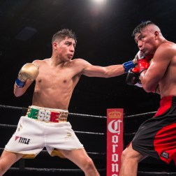 Vargas vs Herrera_12_15_2017_Fight_Pete Young _ Premier Boxing Champions13