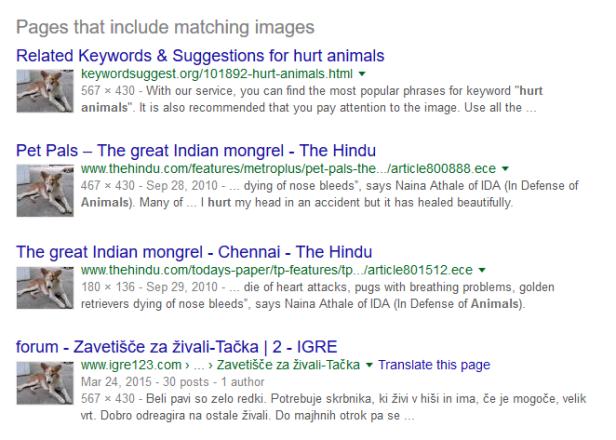 Reverse image search Gofundme