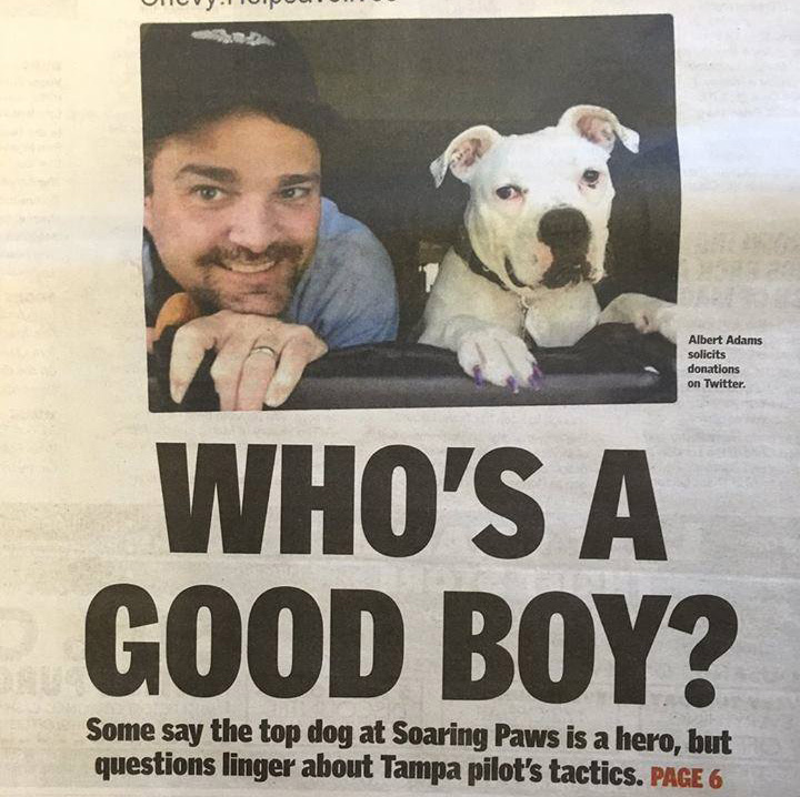 Soaring Paws Tampa Bay Times