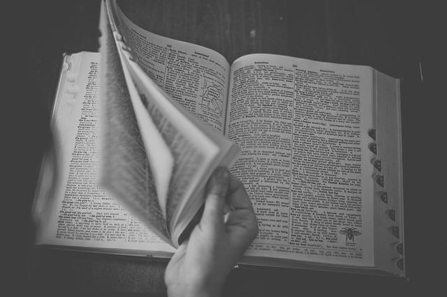 英語辞書おすすめ3選、これから英語学習を始める人が買うべき辞書