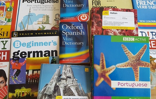マルチリンガルは生まれつき外国語習得が得意なの?即効的に外国語をマスターする秘訣
