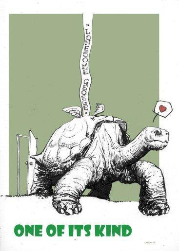 lonesome-george-tortoise-2