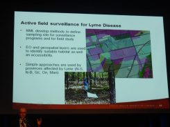 Lyme Desease GIS