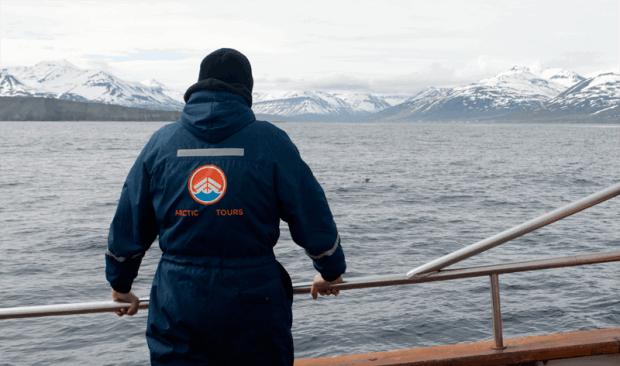 Reisetipps für Island: Whale Watching mit Arctic Tours