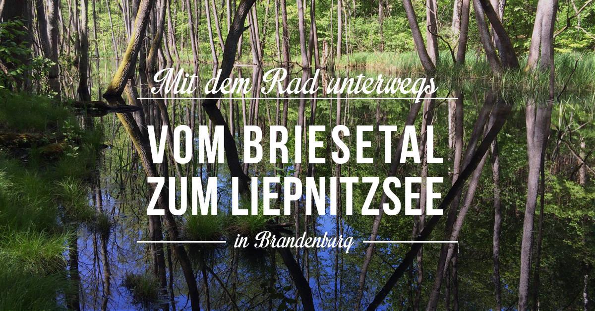 Ausflugtipps in Brandenburg: Mit dem Fahrradfahren vom Briesetal zum Liepnitzsee im Berliner Norden