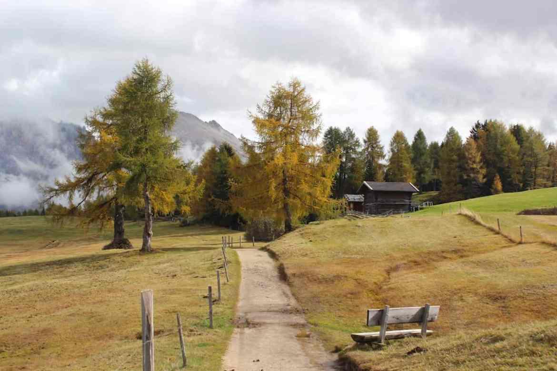 Wandern auf der Seiser Alm in Südtirol