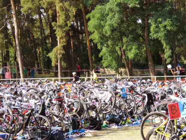 gogirlrun_triathlon_kallinchen21