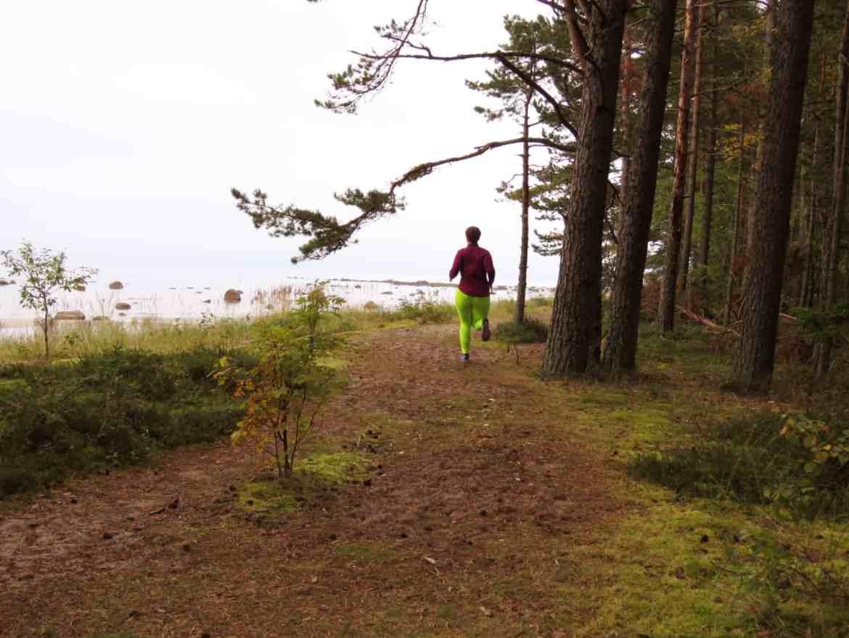 Laufen im Lahemmaa Nationalpark